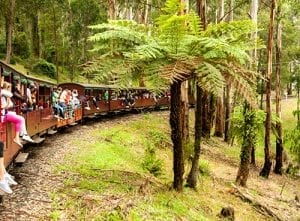 Melbourne Insider Tip: Puffing Billy