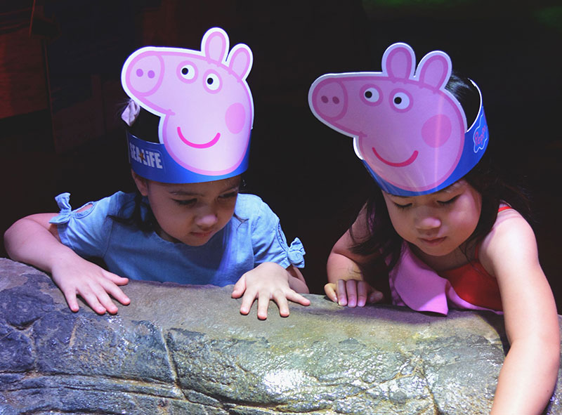 School Holidays Activities - Peppa Pig