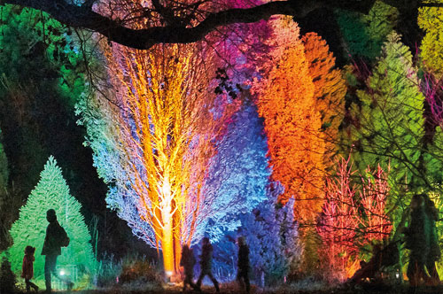 Lightscape at the Royal Botanic Gardens